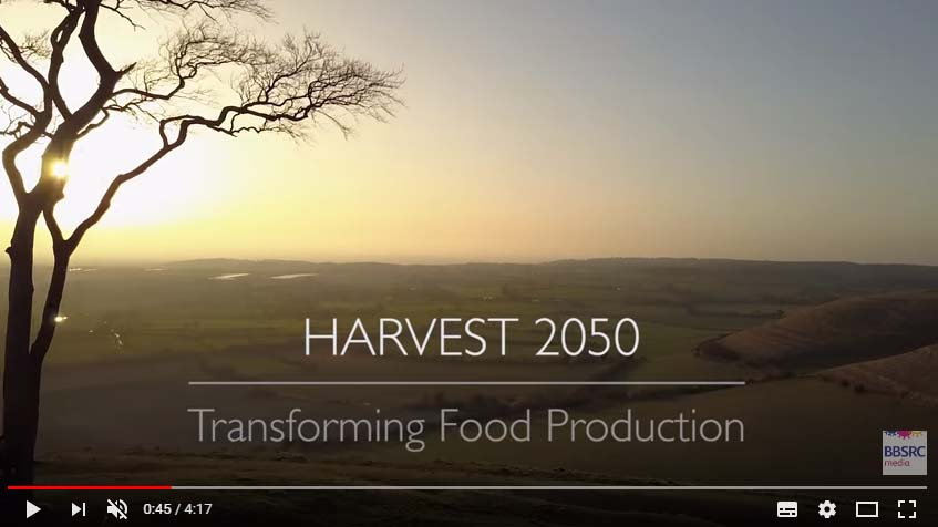 Exploring opportunities that could revolutionise farming systems.